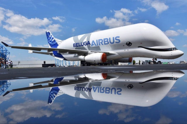 New Airbus transport aircraft BelugaXL sports whale's grin