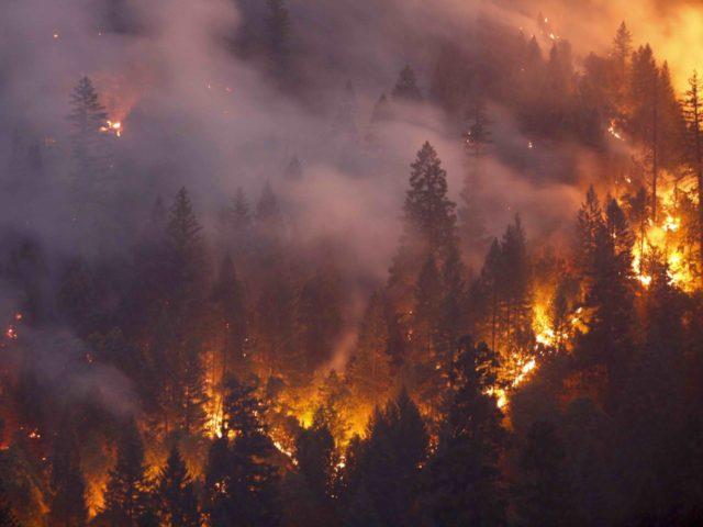 California fires (Terray Sylvester / Getty)