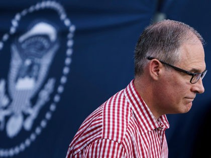 Environmental Protection Agency Administrator Scott Pruitt walks during an Independence Day picnic for military families on the South Lawn of the White House July 4, 2018 in Washington, DC. (Photo by Brendan Smialowski / AFP) (Photo credit should read BRENDAN SMIALOWSKI/AFP/Getty Images)