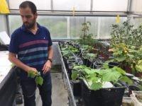 Tomer Malchi water experiment (Joel Pollak / Breitbart News)