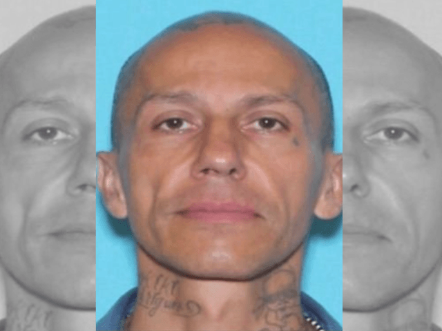 Suspected serial killer in custody following auto chase in Houston-area manhunt