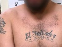 Border Patrol agents in Hebbronville, Texas, arrested previously deported MS-13 gang member. (Photo: U.S. Border Patrol/Laredo Sector)