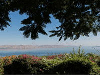 A picture taken on September 24, 2016, shows a general view of the northwestern shore of the Sea of Galilee from the Church of the Mount of Beatitudes in Tabgha. The Mount of Beatitudes is said to be where Jesus gave his Sermon on the Mount in which he summarised …