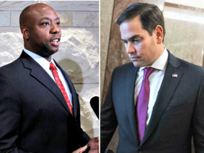 Tim Scott, Marco Rubio