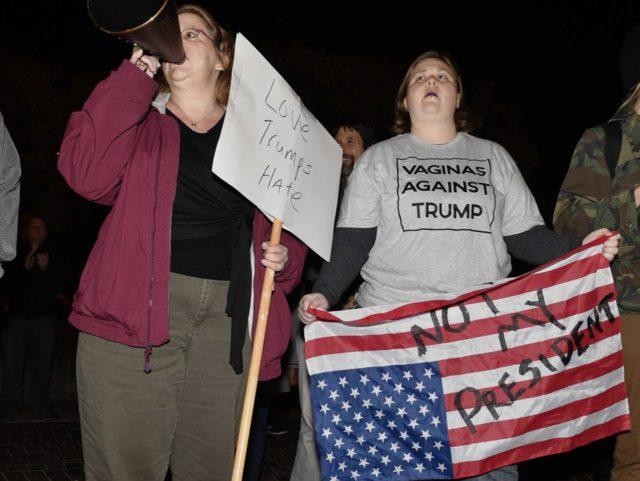 Vaginas against Trump flag distress (Timothy D. Easley / Associated Press)