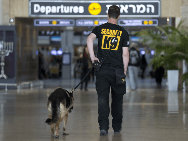 An Israeli airport security guard patrols with a dog in Ben Gurion airport near Tel Aviv, Israel, Tuesday, March 22, 2016. After the Brussels attacks, Israel briefly announced that all Israeli flights from Europe were canceled, then reinstated the flights, Israel Airports Authority spokesman Ofer Leffler said.