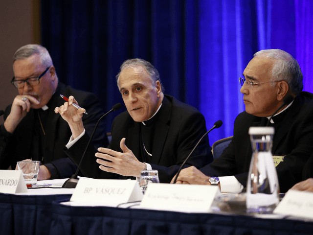 U.S. Bishops: 'We Are Shamed' by Sins, Omissions of Catholic Priests, Bishops