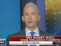 Gowdy Criticizes Trump's Putin DC Invitation — 'Reserved' for Allies