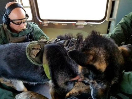 A National Guard aircrew rescues a Border Patrol K-9 suffering from heat exhaustion in the Arizona desert. (Photo: U.S. Border Patrol)