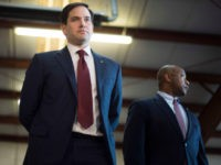 Rubio, Scott Lead Assault Against 'Qualified' Conservative Judge