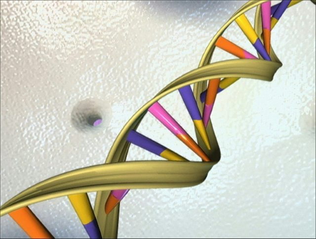 Gene-editing damages DNA more than previously thought: study