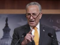 Schumer: WH Needs Congressional Approval to Reallocate Money to Wall, They Won't Get It