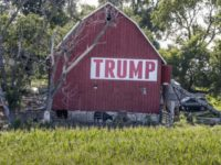 Farmers prefer Trump do trade deals than hand them cash