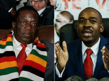 Both President Emmerson Mnangagwa, left, and opposition leader Nelson Chamisa, right, have said they are headed for victory in Zimbabwe's landmark elections