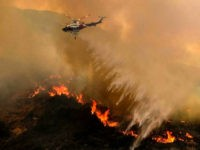 A helicopter drops water to a brush fire at the Holy Fire in Lake Elsinore, California, southeast of Los Angeles, on August 11, 2018. - The fire has burned 21,473 acres and was 29 percent contained as of 8:30 a.m. Saturday, according to the Cleveland National Forest. (Photo by RINGO …