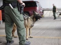 U.S. Customs and Border Patrol agents and K-9 security dogs keep watch at a checkpoint station, Friday, Feb. 22, 2013, in Falfurrias, Texas. Government agencies vary widely in how they are dealing with $85 billion in across-the-board budget cuts that went into effect last week. Federal workers could face seven …