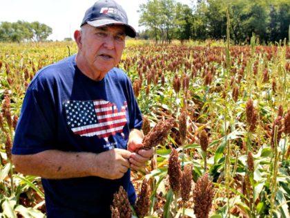 American Farmer poll farm