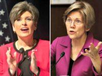 Joni Ernst, Elizabeth Warren