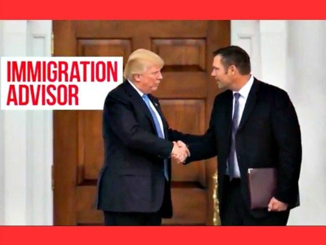 """""""Unafraid"""" Kobach Ad with Trump"""