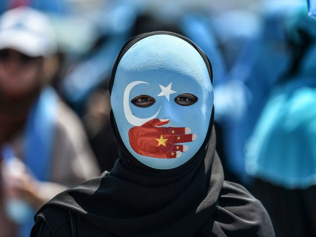 TOPSHOT - A demonstrator wearing a mask painted with the colours of the flag of East Turkestan and a hand bearing the colours of the Chinese flag attends a protest of supporters of the mostly Muslim Uighur minority and Turkish nationalists to denounce China's treatment of ethnic Uighur Muslims during …