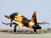 Report: Iran Unveils First Domestic Fighter Jet