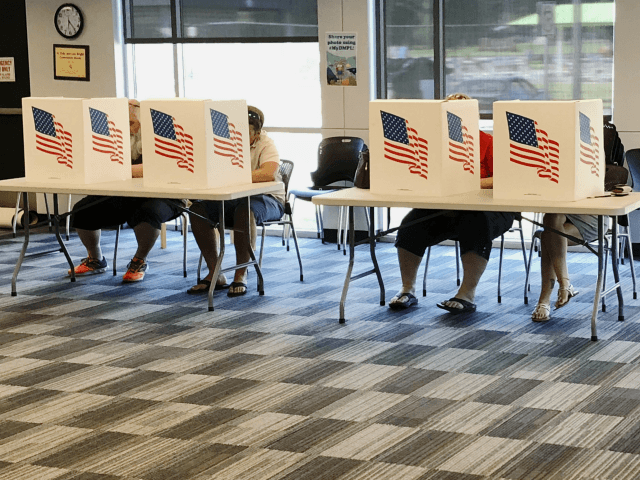 Voters fill out primary ballots at a Polk County polling place at East Side Library in Des Moines, Iowa, Tuesday, June 5, 2018. Five Democrats are competing for their party's nomination to oppose Republican Gov. Kim Reynolds, and big fields of Democrats also are running for U.S. House seats, reflecting …