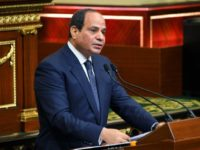 Egypt's Sisi appoints raft of new governors in new shake-up