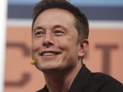 German Judge: Environmentalist Elon Musk Can Chop Down Forest to Build Tesla Factory