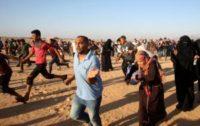 Gaza border clashes kill 2, injure 270