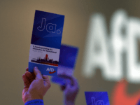 A delegate holds up a voting card reading 'yes' during a party congress of Germany's far-right and anti-immigration party AfD (Alternative fuer Deutschland) in Augsburg, southern Germany, on June 30, 2018. (Photo by Christof STACHE / AFP) (Photo credit should read CHRISTOF STACHE/AFP/Getty Images)