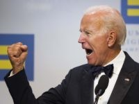 Joe Biden bully (Cliff Owen / Associated Press)