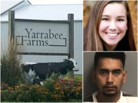 Mollie Tibbetts-Bahena-Rivera-Yarrabee Farms