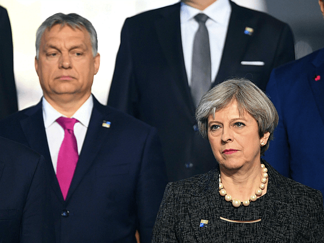 (L-R) US President Donald Trump, Hungarian Prime Minister Viktor Orban and British Prime Minister Theresa May, pose for a family picture during the NATO (North Atlantic Treaty Organization) summit at the NATO headquarters, in Brussels, on May 25, 2017. / AFP PHOTO / POOL / Stefan Rousseau (Photo credit should …