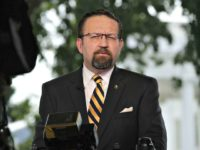 Seb Gorka: The Left Sent 'Death Threats' to Me, 'My Wife, My Children'