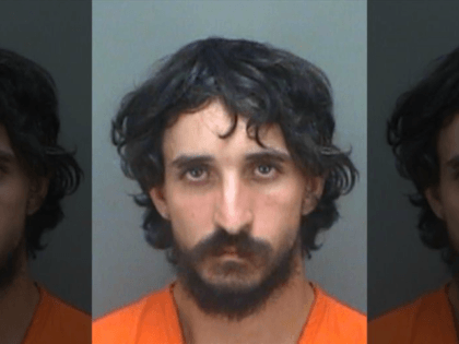 Dana Thomas Byrd, 30, was arrested for grand theft-auto and leaving the scene of a crash involving death, the Florida Highway Patrol said in a news release. (Pinellas County Sheriff's Office)