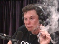 "Elon Musk, Tesla chairman, smokes a ""spliff"" (marijuana and tobacco cigar) on the Joe Rogan Experience podcast."