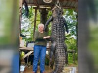 Great Grandma Kills 12-Foot Alligator that Ate Her Miniature Horse