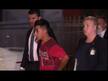 Julio Cesar Ayala, 18, was detained by the NYPD on Saturday and charged with sexually motivated burglary and first-degree rape