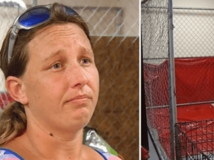 Good Samaritan Arrested for Sheltering Pets During Hurricane Florence