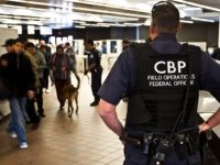 Adult Migrant at Border Faked Being 'Unaccompanied Minor,' Say Feds