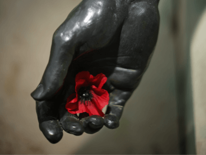 ALREWAS, STAFFORDSHIRE - NOVEMBER 11: A poppy sits in the hand of a statue of a fallen soldier during the annual Armistice Day Service at the Armed Forces Memorial at the National Memorial Arboretum on November 11, 2015 in Alrewas, United Kingdom. People across the UK and the world gathered …