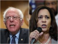 Combo photo of Bernie Sanders and Kamala Harris-AP/Getty