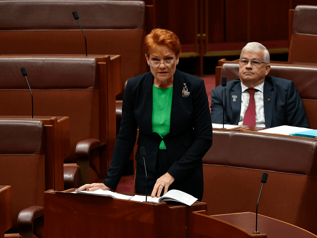 Coalition backs Pauline Hanson's 'It's Ok to be white' motion