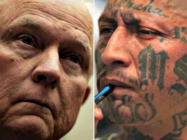 Jeff Sessions vs Transnational Gangs