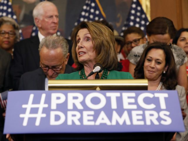 Nancy Pelosi amnesty (Aaron P. Bernstein / Getty)