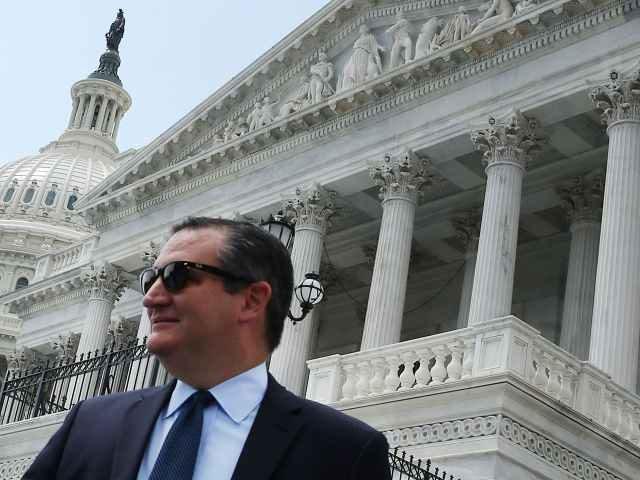 Ted Cruz in sunglasses