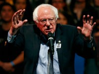 Feel the Bern: Sanders Top Democrat in 2020 Presidential Race Poll