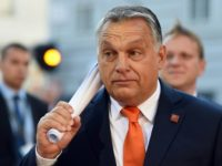 Hungary gender studies ban draws university anger