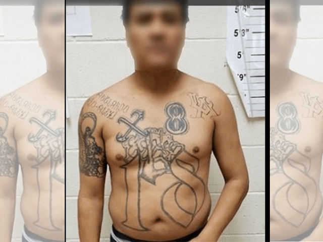 Border Patrol agents arrest an 18th Street gang member near Texas border. (Photo: U.S. Border Patrol/Laredo Sector)