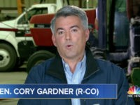 GOP Sen. Gardner: 'We Have Evidence That the State Constitution of Florida Was Violated'